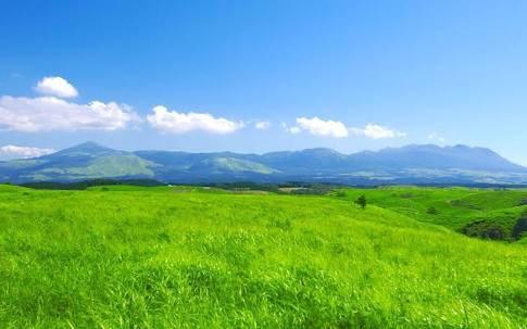 mjhXbgotdlPCk - 【朗報】ゼノブレイド2の草が3ヶ月前から増えまくり