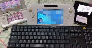 DLNsBilUQAA4XDa 384x200 - WiiU買った奴って今そのWiiUをどうしてんの?