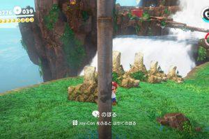 Ppxc8wQMaE4MN 300x200 - マリオオデッセイ「棒をはやく登るにはジョイコンを振れ!」←は?