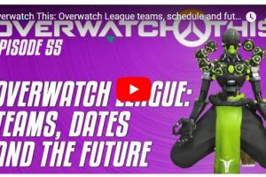 f81fd2e4c52864042852c112ce927ae2 39 300x200 - 【ゲーム】FPS『Overwatch』で同じキャラクターでずっと遊び続けていたプレイヤー、BANされる