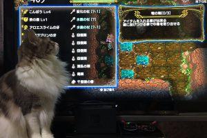 R3v1QZ16gicTE 300x200 - 【悲報】大塚角満さん、Switchのゲームにハマってしまう…