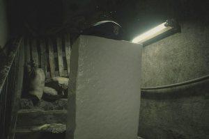 1 25 300x200 - 「バイオ2 リメイク」の豆腐、実際に木綿豆腐をスキャンして作られた豆腐モメンである事が判明