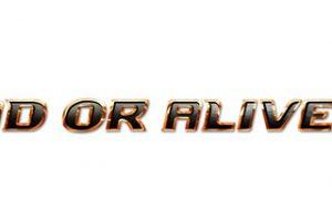 5c34055077634 300x200 - コエテク、『デッドオアアライブ6』発売延期を告知