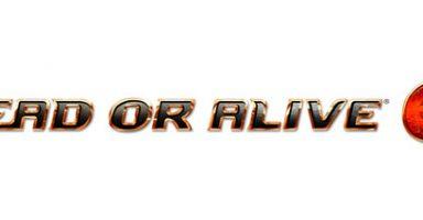 5c34055077634 384x200 - コエテク、『デッドオアアライブ6』発売延期を告知