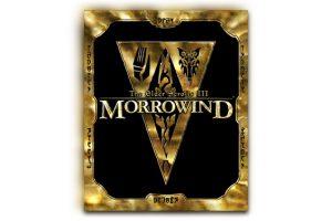 293054 300x200 - 『The Elder Scrolls』シリーズ25周年 1日限定で『Morrowind』を無料配布