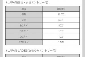 ldTE1V6 300x200 - 🏆東京都主催のeスポーツ大会、タイトルは国産に限定 賞金なし 運営費5000万円