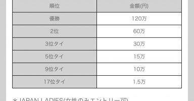 ldTE1V6 384x200 - 🏆東京都主催のeスポーツ大会、タイトルは国産に限定 賞金なし 運営費5000万円