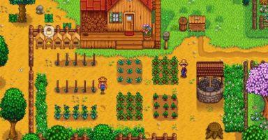 img9507 01 384x200 - 農場生活シム「Stardew Valley」、1000万本突破! なぜ「牧場物語」はこうなれなかったのか…