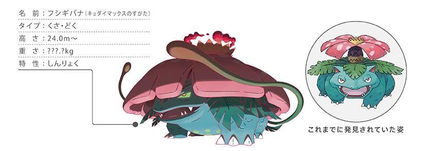 5 29020231522813 jpg - ポケモン剣盾 鎧の孤島、6月17日発売決定!!