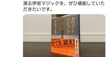 KqXkmM6 384x200 - 【朗報】小島監督が一ヶ月ぶりにツイッターを更新